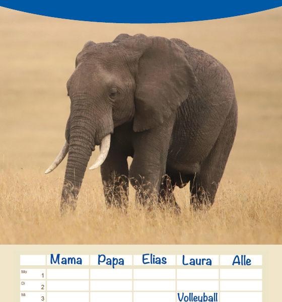 "Familienplaner ""Kenias wilde Elefanten"""